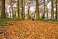 Prospect Park, Reading, England.jpg