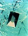 Protein Crystal Growth Porcine Elastase.jpg
