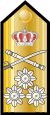 RHN-VAdm-shoulder.svg