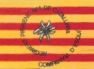 Military history of Catalonia - Flag of the Ski Company of the Regiment