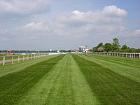Racecourse - geograph.org.uk - 821537.jpg