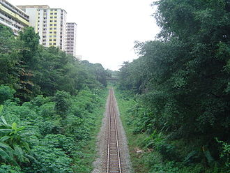 Rail transport in Singapore - Defunct railway track in Buona Vista, dismantled shortly after closure in 2011