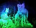 Rainbow hologram.jpeg
