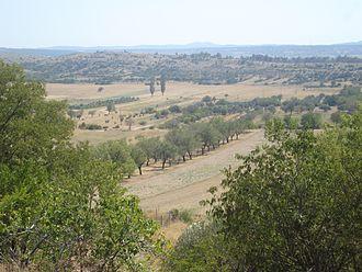 Ravni Kotari - Part of Ravni kotari seen from the village of Ostrovica to the south