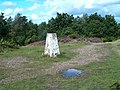 Regents Wood trig point - geograph.org.uk - 231330.jpg