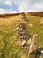 Remains of dry stone wall - geograph.org.uk - 497417.jpg