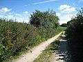 Retelsdorfer Weg - geo.hlipp.de - 15307.jpg