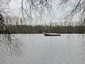 Rhein IMG 0337-3.jpg