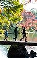 Rikugi-en Gardens, Tokyo; November 2012 (05).jpg