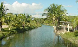 Mayabeque River