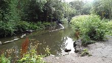 Photograph of the River Crane