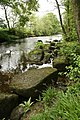 River Nidd - geograph.org.uk - 440176.jpg