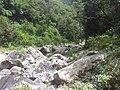 Rivière des marsouins - panoramio (1).jpg