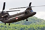 RoSAF - Chinook - Open House 2008 MG 7418 (2810196929).jpg