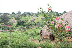 Houses along the road from Pweto to Dubie, Katanga