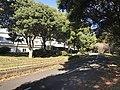 Road near Unzen Resort Hotel.jpg
