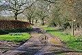 Road to Lone Barn House - geograph.org.uk - 353084.jpg