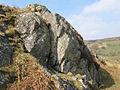 Rock outcrop - geograph.org.uk - 1235604.jpg