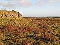 Rock outcrop southeast of Carrawbrough (3) - geograph.org.uk - 1260683.jpg