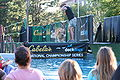 Rockford, IL On the Waterfront dog show 01.JPG