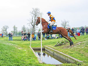 Horse jumping obstacles - Horse and rider negotiating the ditch element of a coffin.