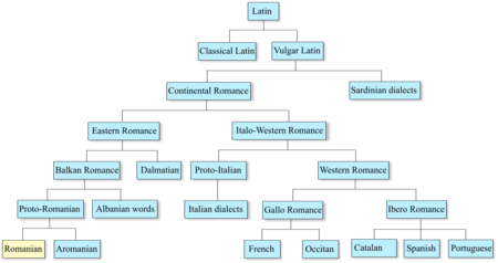 sociolinguistics dialect continuum and language essay Choose from 147 different sets of sociolinguistics 1 flashcards on quizlet  of the continuum that arose during  the relation between language and.