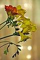 Romania-1463 - Table Flowers (7596225140).jpg