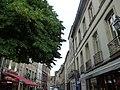Rue Carnot, Beaune - L'Europeen Brasserie (35595297846).jpg