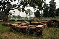 Ruins of Patliputra at Kumhrar.JPG
