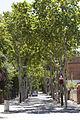 Rutes Històriques a Horta-Guinardó-passeig font fargues 02.jpg