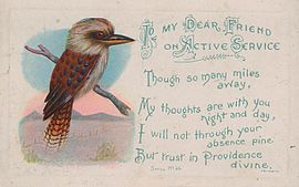 SLNSW 75769 To my Dear Friend on Active Service postcard with Kookaburra and text
