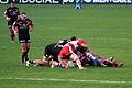 ST vs Gloucester Ruck 03.JPG