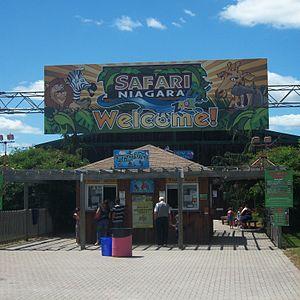 Stevensville, Ontario - Safari Niagara is an important visitor attraction in Stevensville.
