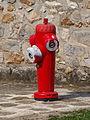 Saint-Martin-en-Bière-FR-77-bouche d'incendie-28.jpg