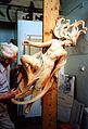 Salacia in workshop.jpg