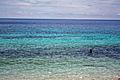 Salagdoong Beach (11052635916).jpg