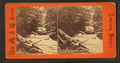 Salt Pond Mountain view, Virginia, from Robert N. Dennis collection of stereoscopic views.png