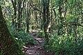 Santa Elena Reserve 01.jpg
