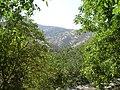 Sawlawa - panoramio.jpg