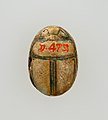 Scarab Inscribed for the God's Wife (Ahmose-)Nefertari MET 30.8.473 EGDP011203.jpg