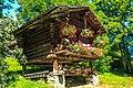 Scenes around Gimmelwald (10955389295).jpg