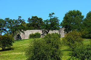Burgruine Amöneburg