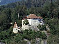 Schloss Laupen Südansicht.jpg
