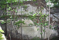 Schwarzenbach Deckeneinzug Wehrgang mit Schießscharten oberhalb.JPG