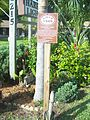 Sebastian FL East HD Harbor Light Motel sign01.jpg