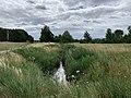Selchower Flutgraben am BER Blick nach Südosten.jpg