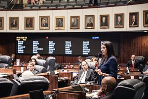 Anitere Flores - Senator Flores on the floor of the Senate.