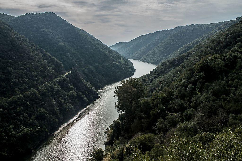 Parc naturel de Sierra de Hornachuelos - Photo de F.J.fotografía