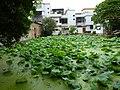 Shantou, Guangdong, China P1050126 (7477599006).jpg