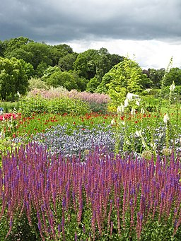 Shock of colour at Harlow Carr - geograph.org.uk - 1399297